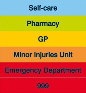 CHOOSEWELL_internet[1]